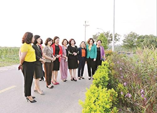 Đoàn công tác Hội LHPN Hà Nội thăm tuyến đường nở hoa tại xã Cổ Loa, huyện Đông Anh, Hà Nội