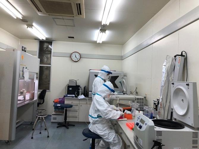 Cán bộ y tế thực hiện xét nghiệm nhanh tìm virus SARS-CoV-2 trong phòng xét nghiệm