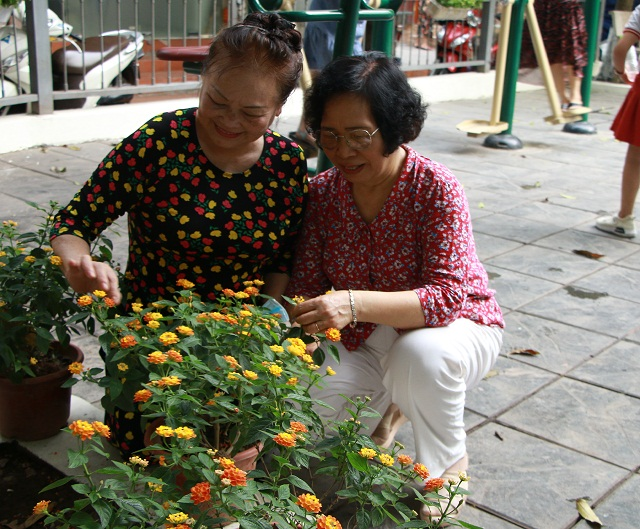 Các cán bộ, hội viên phụ nữ thay nhau bảo vệ, chăm sóc để hoa luôn khoe sắc.