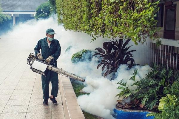 Phun thuốc diệt muỗi phòng dịch sốt xuất huyết