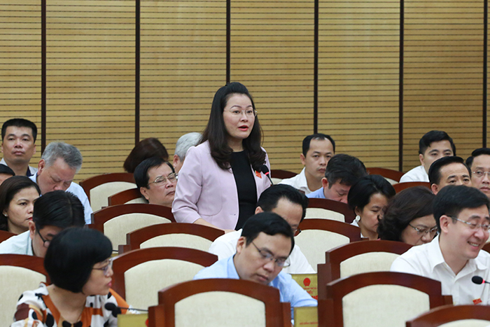 Đại biểu Phạm Thị Thanh Hương nêu câu hỏi