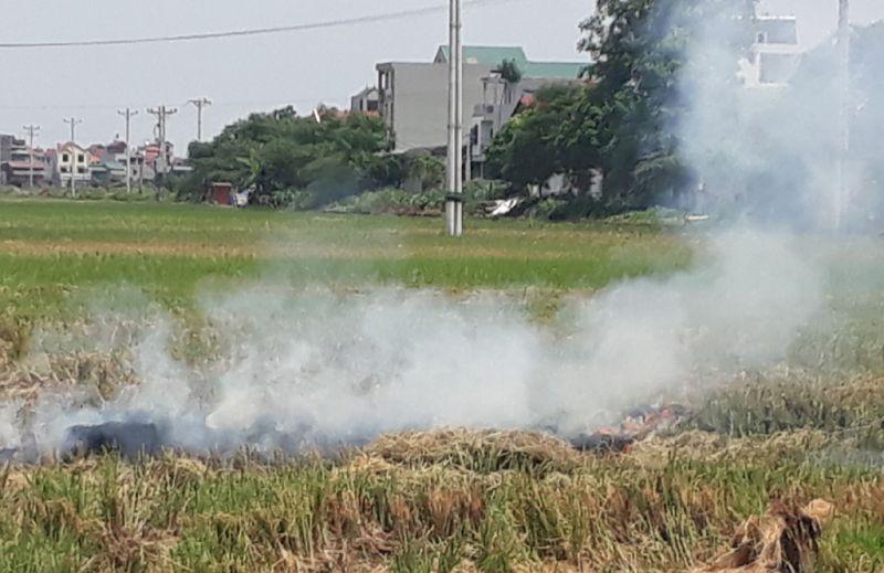 Bà Nguyễn Thị Thìn ở xã Hiệp Thuận (huyện Phúc Thọ) cho biết, nguyên nhân dẫn đến tình trạng đốt rơm rạ do hầu hết người dân không có nhu cầu sử dụng.