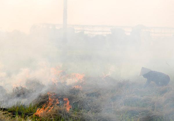 Khói rơm rạ ở ngoại thành bay đi rất xa, gây ra hiện tượng quang hóa, ảnh hưởng đến khu vực nội thành. (Trong ảnh: Người dân huyện Đông Anh đốt rơm rạ sau thu hoạch lúa xuân 2020).