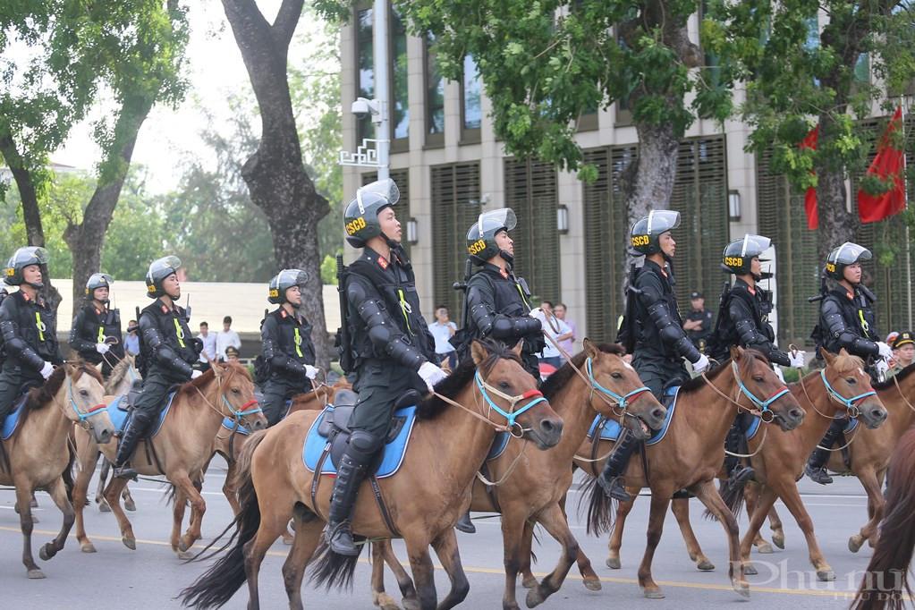 Giống ngựa được tuyển chọn vào ĐCSCĐ kỵ binh có sức khỏe tốt, khả năng thích nghi cao với điều kiện khắc nghiệt
