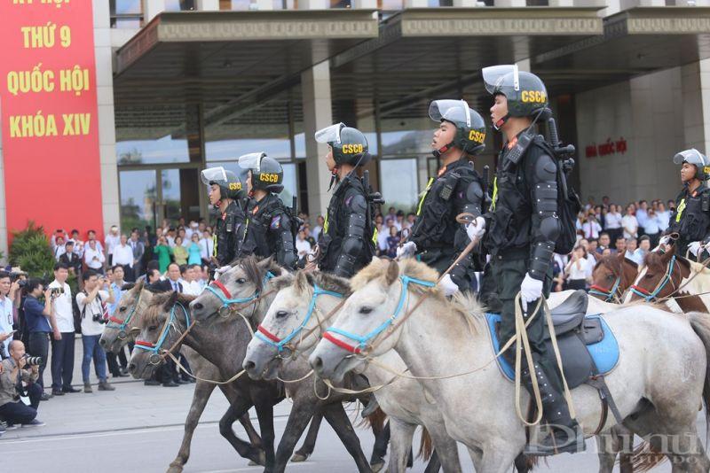 Số ngựa này được Đoàn Cảnh sát cơ động Kỵ binh, Bộ Tư lệnh Cảnh sát cơ động, Bộ Công an chăm sóc và huấn luyện tại Thái Nguyên.