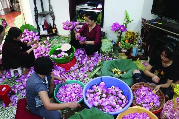Các thành viên trong gia đình nghệ nhân Nguyễn Thị Dần đều say mê ướp trà sen