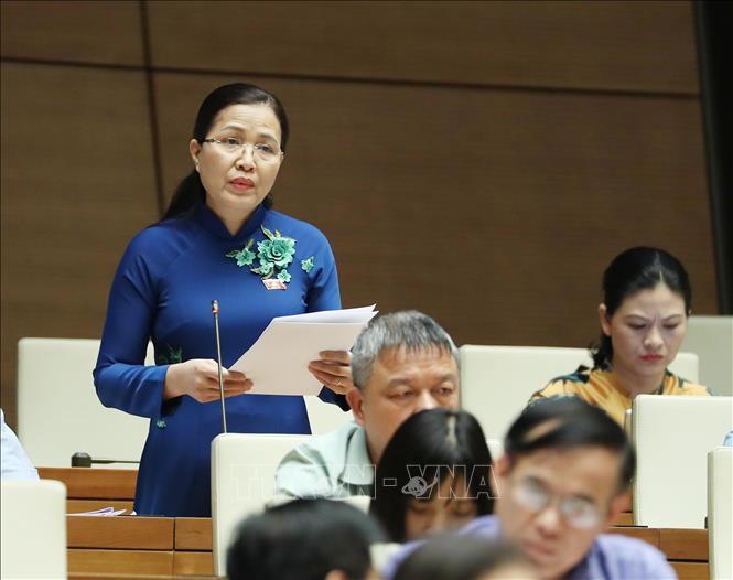 Đại biểu Quốc hội tỉnh Quảng Ninh Đỗ Thị Lan phát biểu ý kiến tại Quốc hội. Ảnh: Trọng Đức/TTXVN.