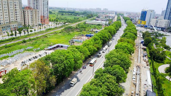 Những hàng cây xanh giúp Hà Nội mát mẻ hơn trong những ngày hè.
