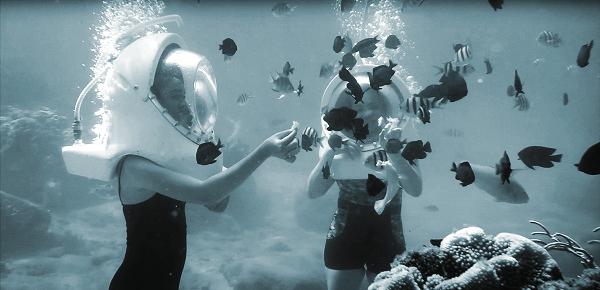 Trải nghiệm đi bộ dưới biển khiến con người và sinh vật biển không có khoảng cách
