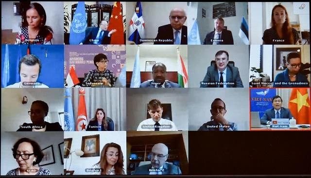 Phiên họp trực tuyến Hội đồng bảo an Liên Hợp quốc tại