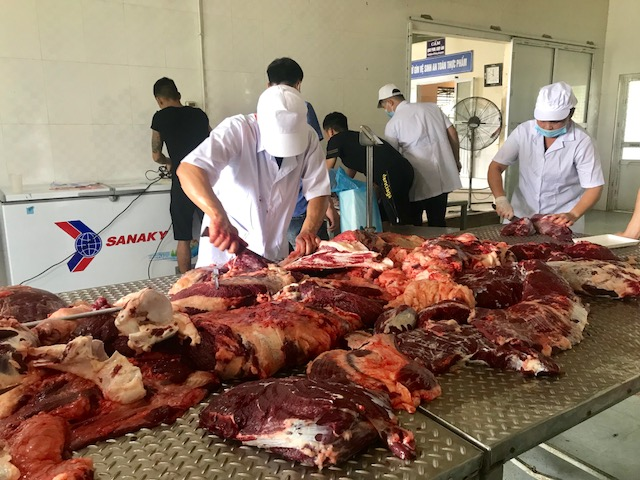 Công ty TNHH Phát triển thương mại Thắng Lợi (huyện Đan Phượng) mổ khảo sát bò lai F1 Wagyu ngày 1/9.