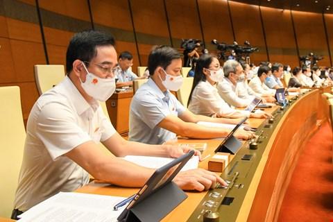 Các đại biểu nhấn nút biểu quyết