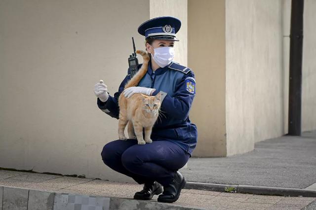 Nữ cảnh sát chơi với một chú mèo bên ngoài nhà thờ ở Bucharest, Romania.