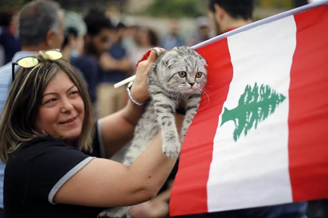 Người biểu tình mang theo chú mèo và lá cờ Lebanon trong cuộc biểu tình ở Beirut, Lebanon.