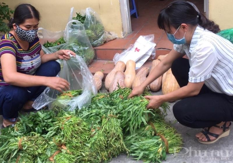 Chị em hội viên phụ nữ quận Hoàng mai phân loại rau xanh trước khi gửi tới các sạp