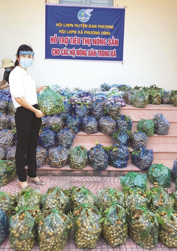 Hội LHPN xã Phương Đình, huyện Đan Phượng hỗ trợ nông dân tiêu thụ nông sản