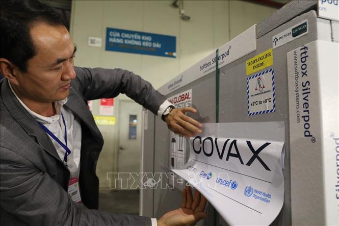 Một lô vaccine phòng COVID-19 của AstraZeneca do COVAX Facility cung cấp về đến sân bay Nội Bài (Hà Nội). Ảnh: Minh Quyết/TTXVN