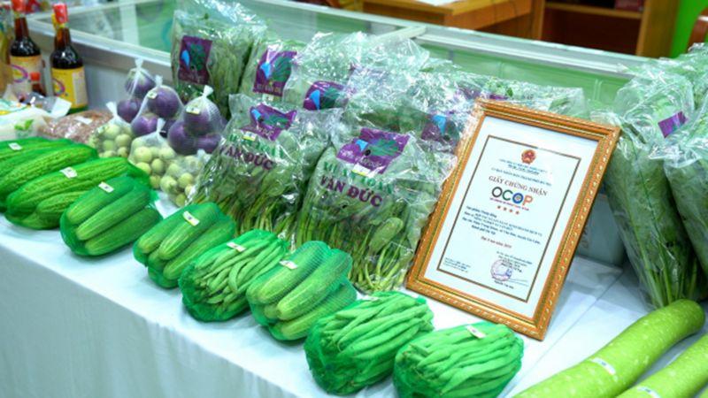 Các sản phẩm rau sạch được cấp giấy chứng nhận OCOP