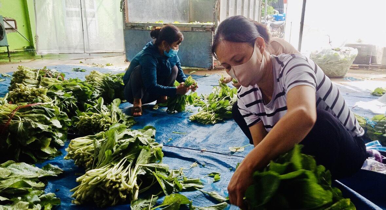Chị em phụ nữ phân loại, đóng gói rau sạch gửi tặng các hộ gia đình khó khăn ở nội thành