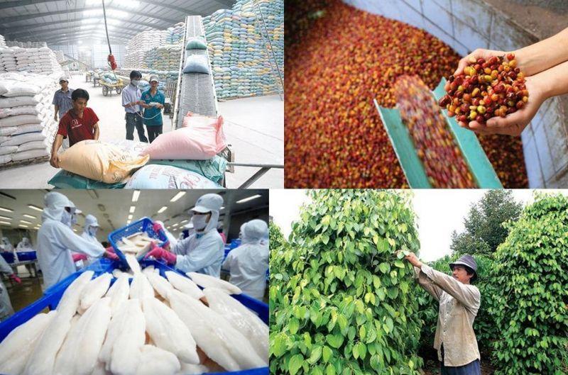 Các bộ, cơ quan liên quan hướng dẫn, hỗ trợ các địa phương, doanh nghiệp nhanh chóng khôi phục chuỗi cung ứng xuất khẩu nông, lâm, thủy sản.