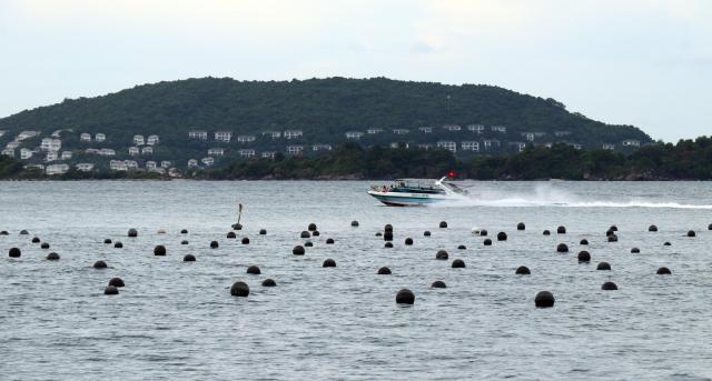 Khu vực nuôi ngọc trai tại vùng biển An Thới, Khu bảo tồn biển Phú Quốc.