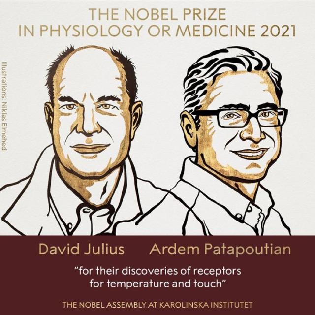Hai nhà khoa học người Mỹ đã tìm ra cơ chế giúp con người cảm nhận xúc giác và nhiệt độ.