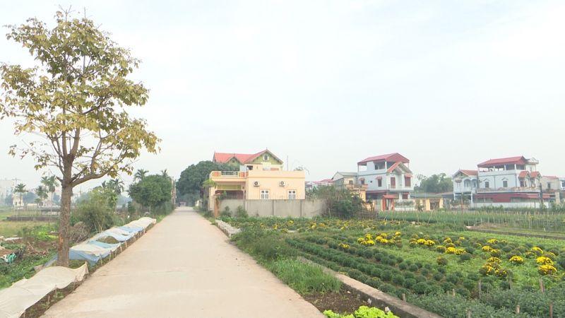 Diện mạo nông thôn Thường Tín ngày một khang trang, đổi mới (Ảnh: TQ)