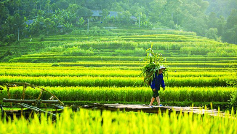 Pù Luông – một trong hai điểm đến dự kiến đón khách ngoại tỉnh ở Thanh Hoá Ảnh: PV
