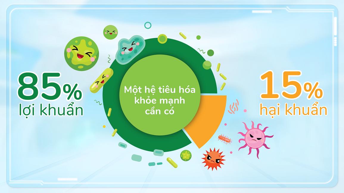 Đường ruột khỏe mạnh khi có 85% là lợi khuẩn và 15% là hại khuẩn.